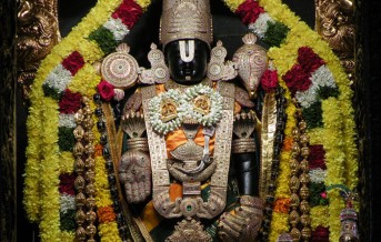 offer seva to-lord-vishnu