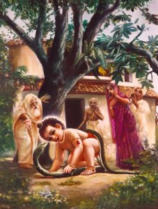 Chaitanya-Mahaprabhu-snake
