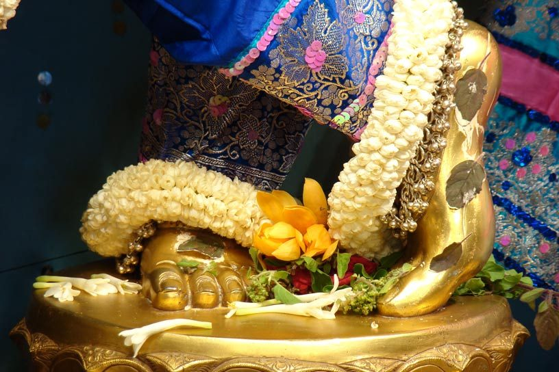 Lotus feet of Krishnachandra
