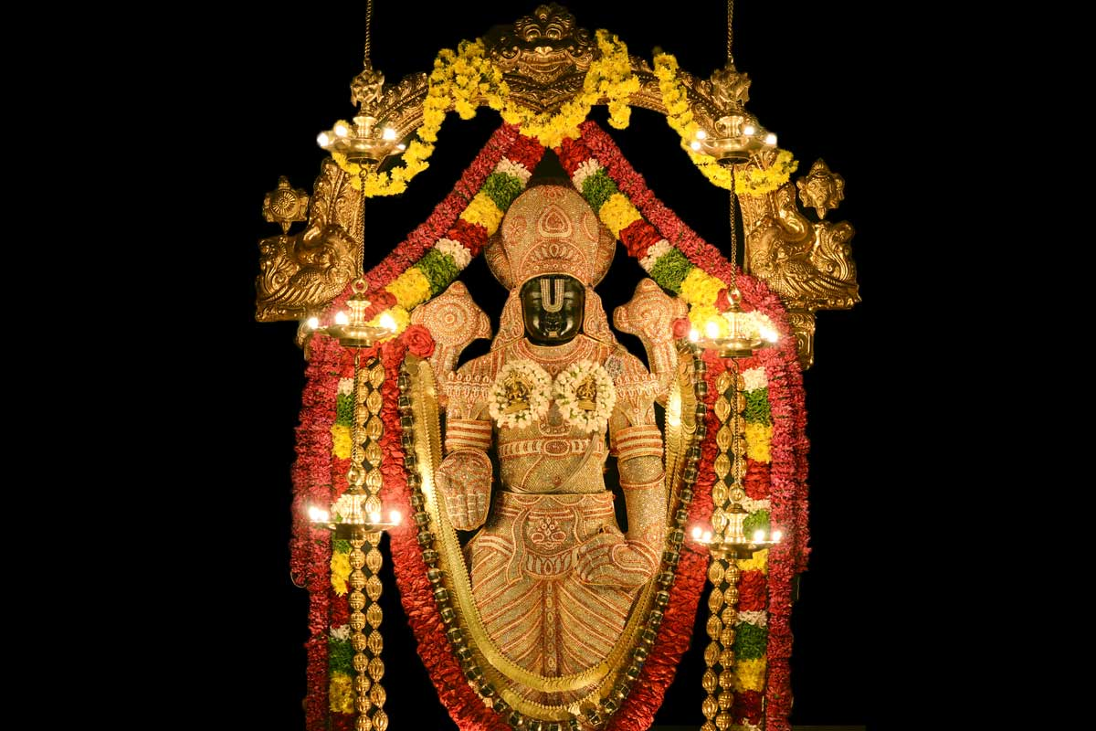 Lord Srinivasa Govinda in a special alankara