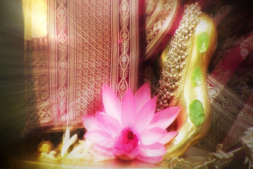 Lotus Feet of Sri Krishna