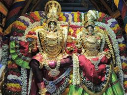 Brahmotsava Annadana Seva