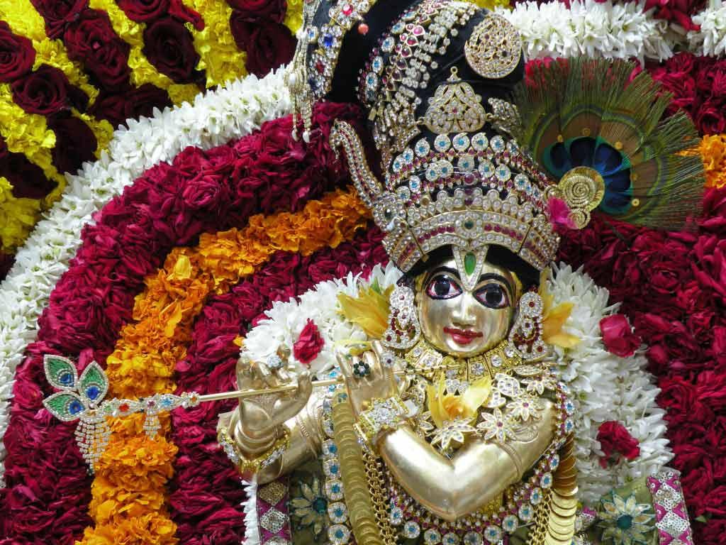 Sri Radha Krishnachandra in a special alankara